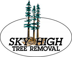 Sky High Tree Removal